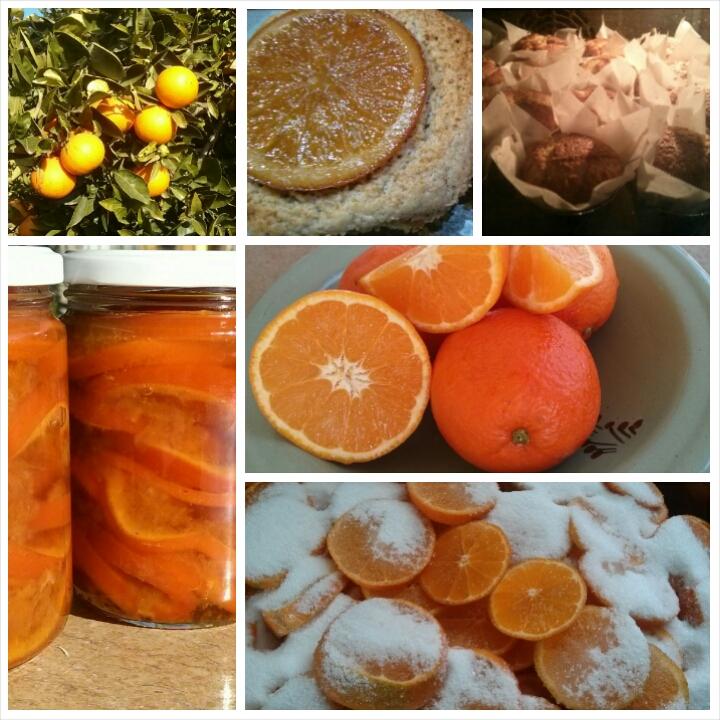 Confitura de naranja para los desayunos del Hotel Sol Benicarló