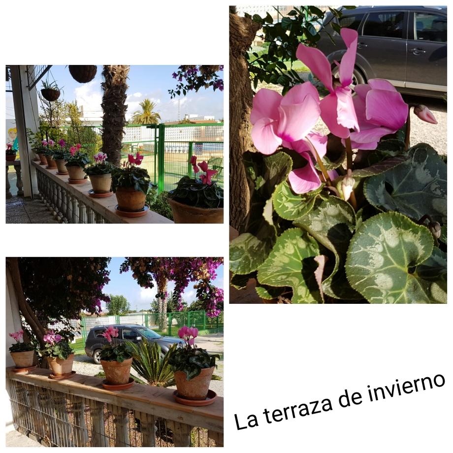 Terraza de invierno en el Hotel Sol de Benicarló
